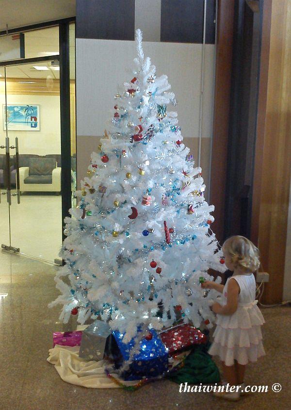 Зима в Таиланде поздравляет с Новым 2012 Годом