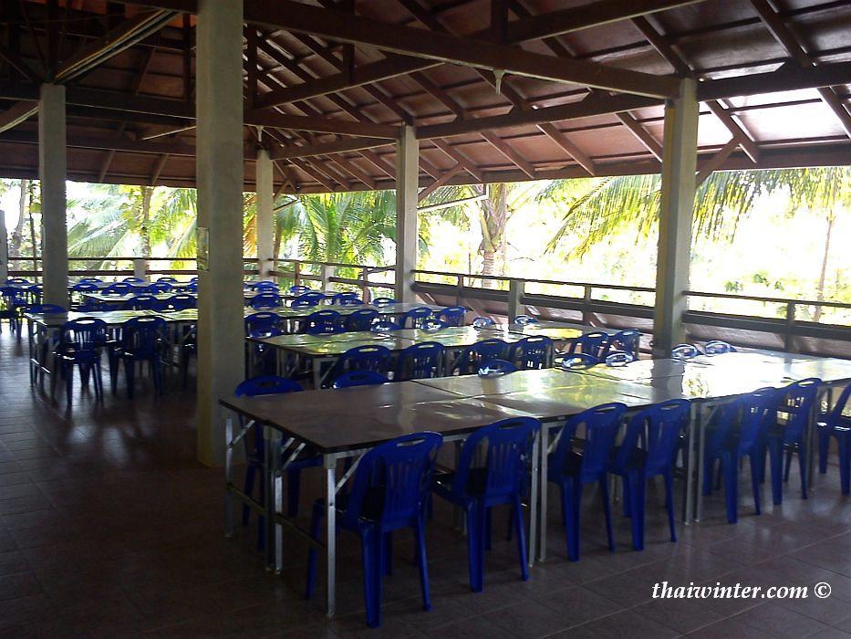 Новый ретрит в Медитационном центре Dipabhavan | Зима в Таиланде