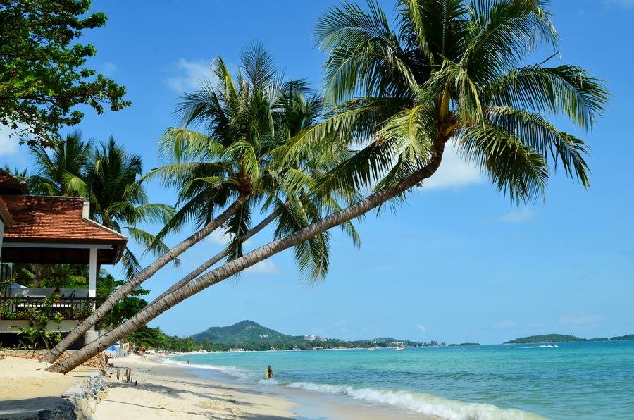 Переезд с любимого острова Самуи в Таиланде | Зима в Таиланде