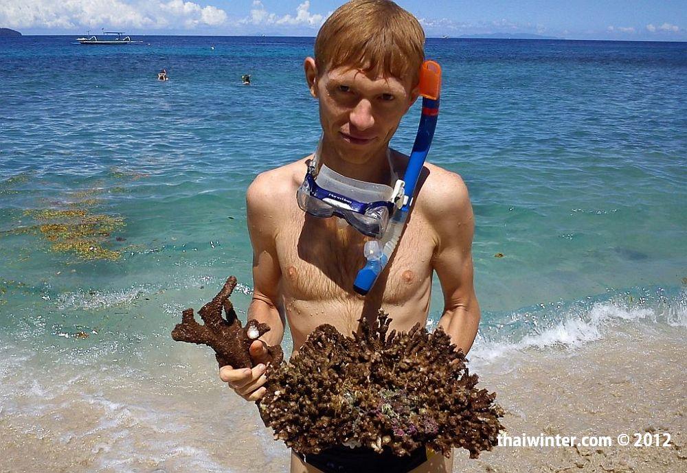 Улов старого коралла на пляже Blue Lagoon на Бали