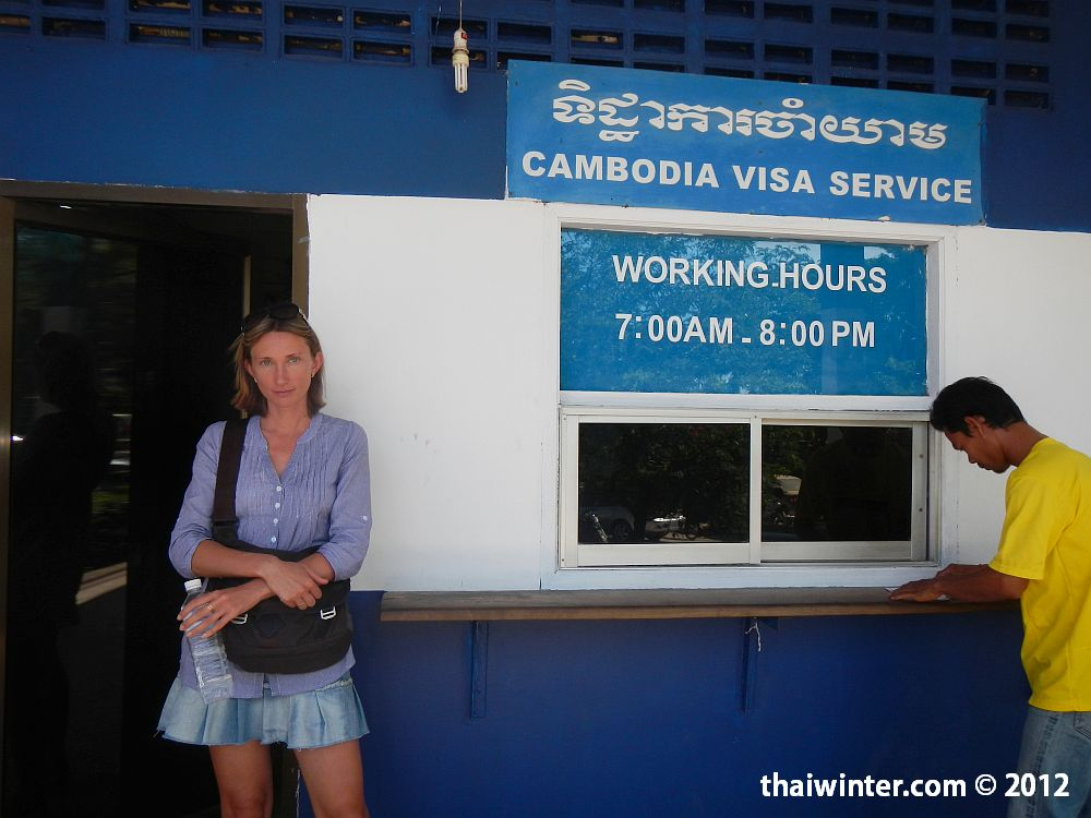 Окно Visa Services