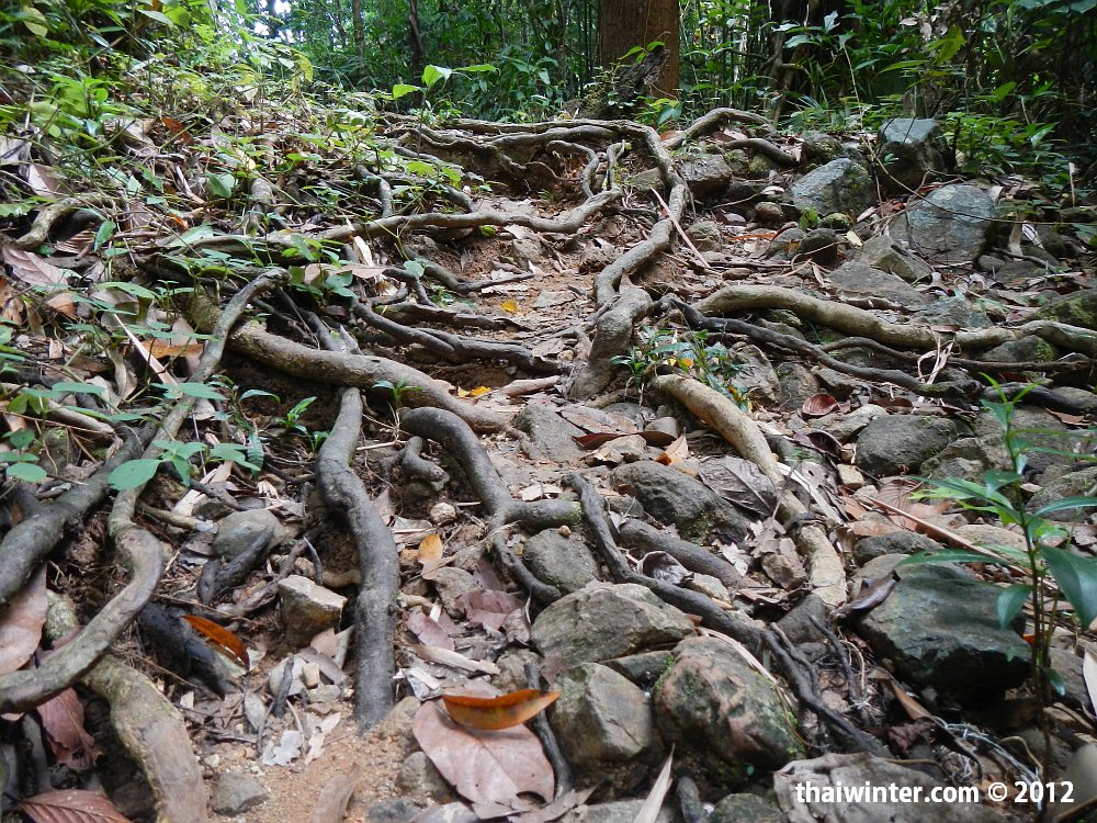 Водопады Ко Чанга - дорога к Klong Jao Leuam