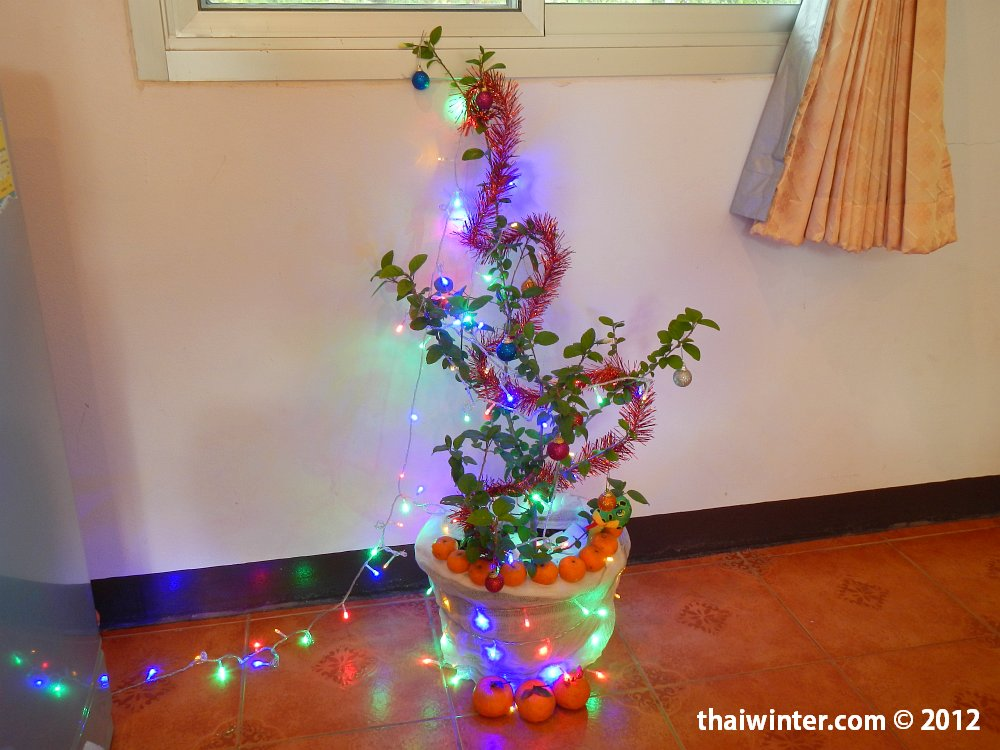 Наше Новогоднее Дерево :)