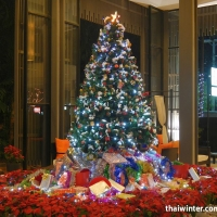 New_Year_Hotels_09