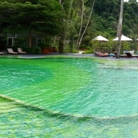 Mercure_Swimming_pools_13