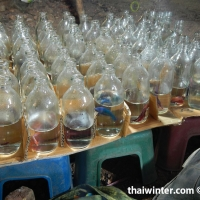 Thai_market_26