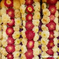 Flowers_22