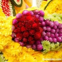 Flowers_28
