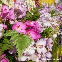 Flowers_61