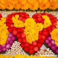 Flowers_80