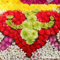 Flowers_81