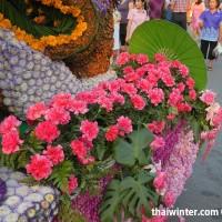 Flowers_85