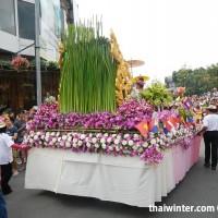 Flower_Festival_50
