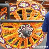 Flower_Festival_79