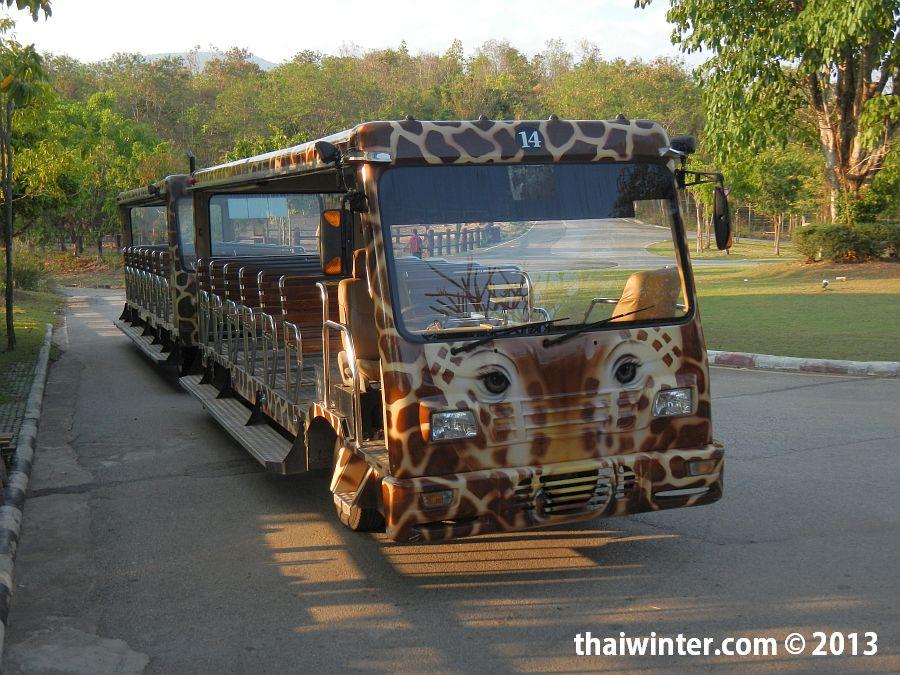Открытый автобус