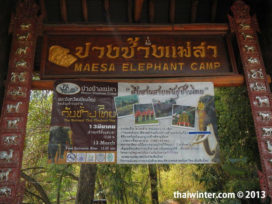 Второй вход в Maesa Elephant Camp