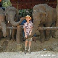 Photo_with_Elephants_4