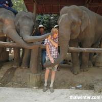Photo_with_Elephants_5