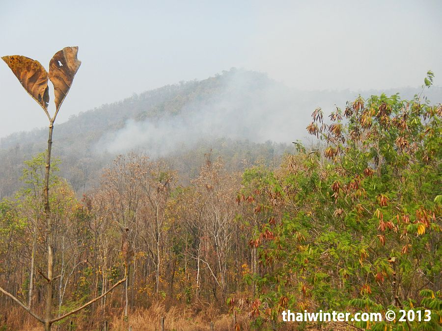 Дым в горах Чианг Мая