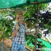 Phuket_POI_6