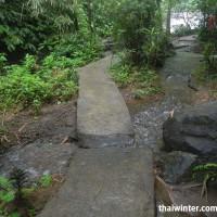 Тропика скользкая и местами ее пересекают ручьи
