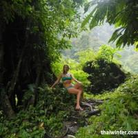 Тропинка между корней деревьев на водопаде Секумпул