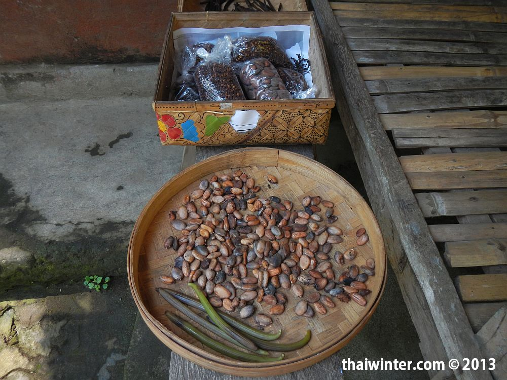 Бобы какао и стручки ванили