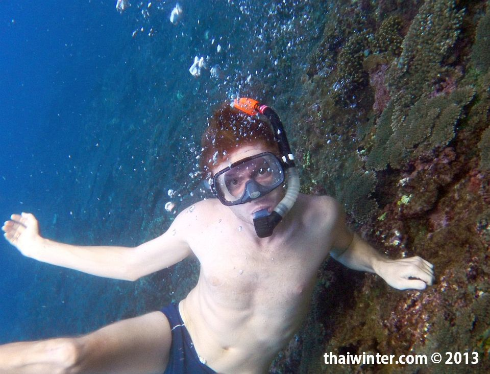 Снорклинг на Бали | Зима в Таиланде