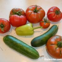 Овощи с теплицы для гаспаччо