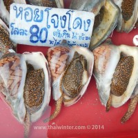 fish_market_19