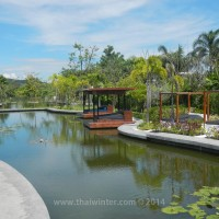 black_lotus_huahin_156