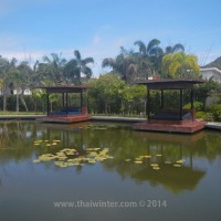 black_lotus_huahin_196
