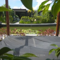 black_lotus_huahin_212
