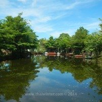black_lotus_huahin_254