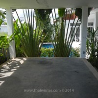 black_lotus_huahin_028