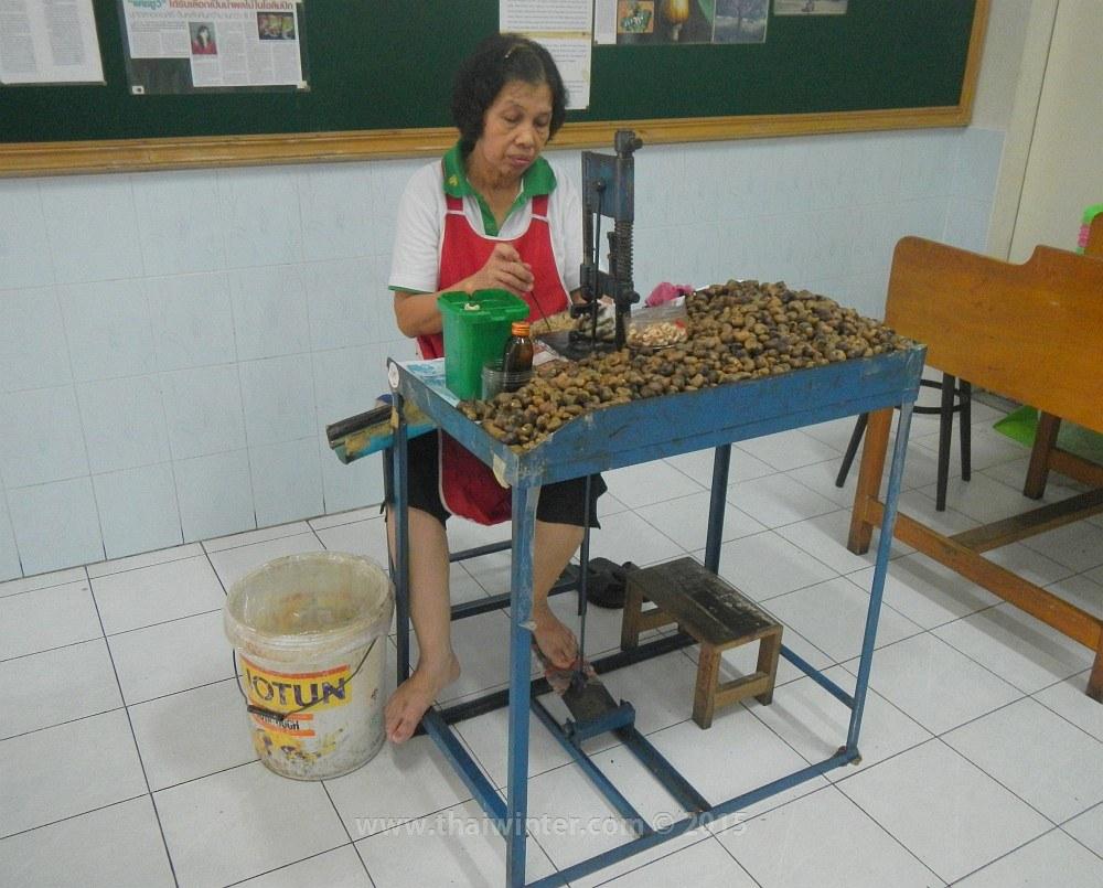 Очистка кешью на фабрике вручную | Зима в Таиланде