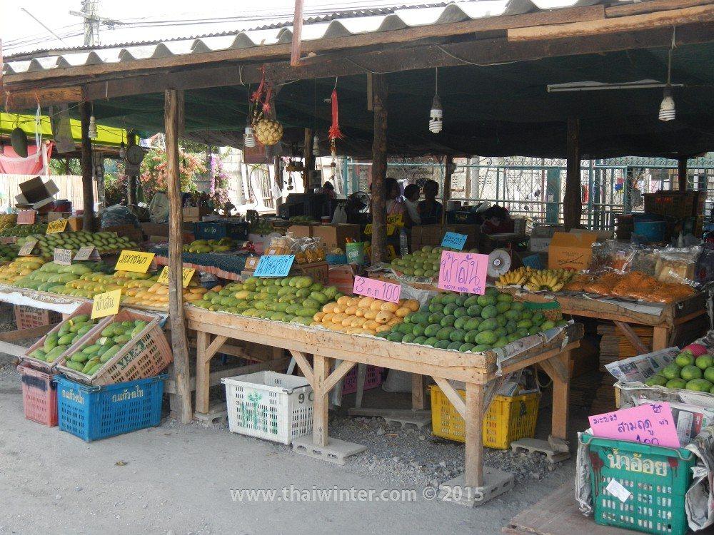 Автопутешествие в Прачуап Кхири Кхан из Хуахина, манго по 34 бата за кг