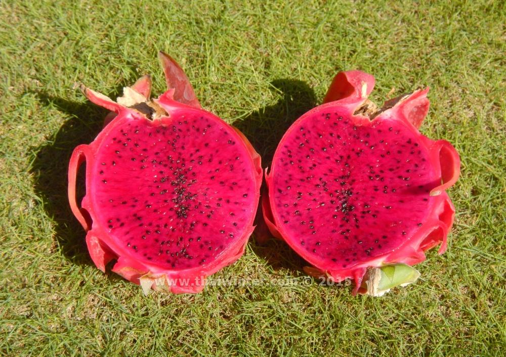 Красный Драгонфрут или Питахайя