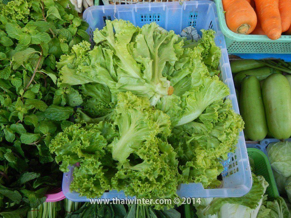 Листья салата в Таиланде