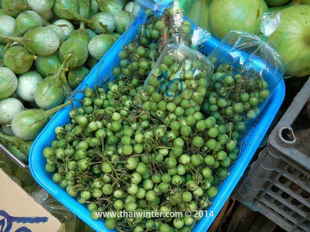 Плоды горохового баклажана в Таиланде