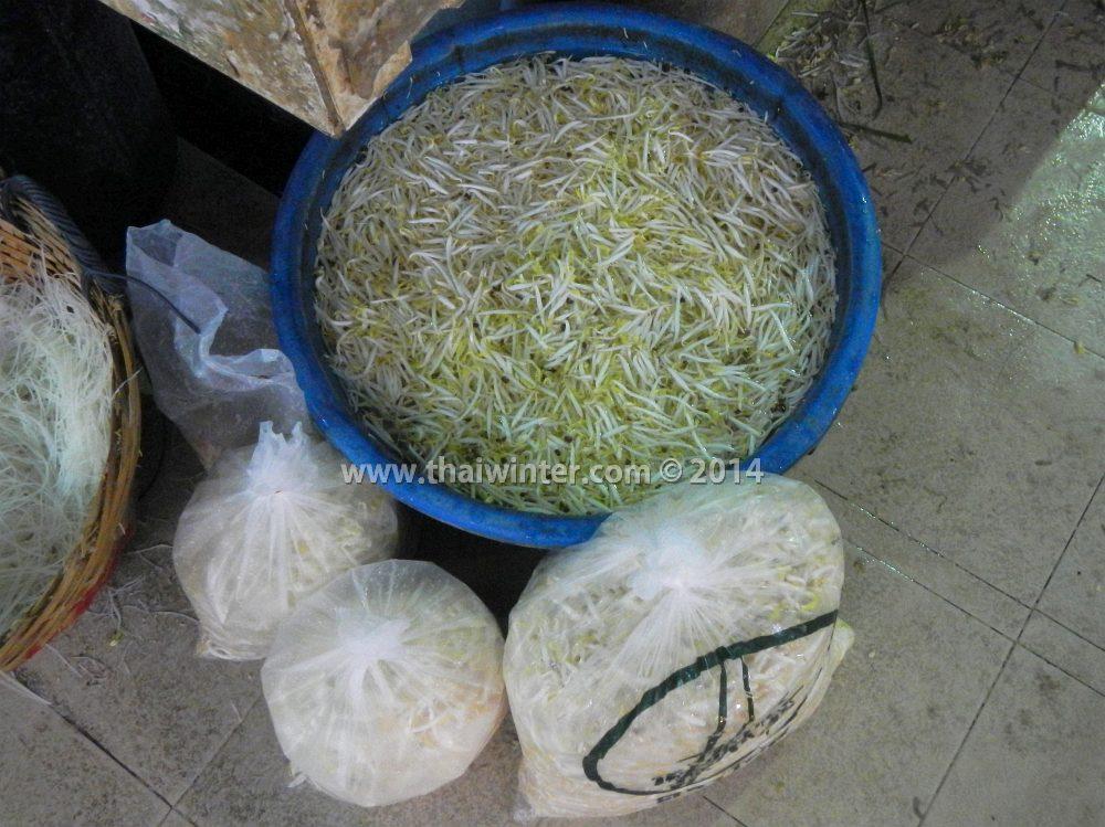 Проростки сои в Таиланде