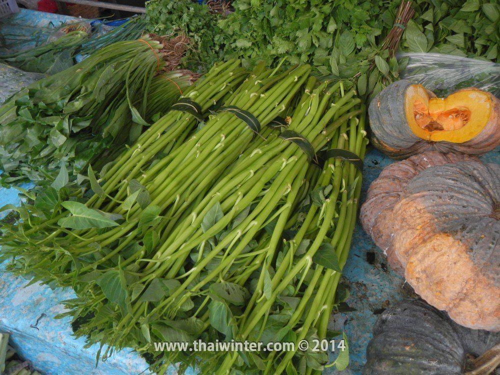 Дикий шпинат в Таиланде