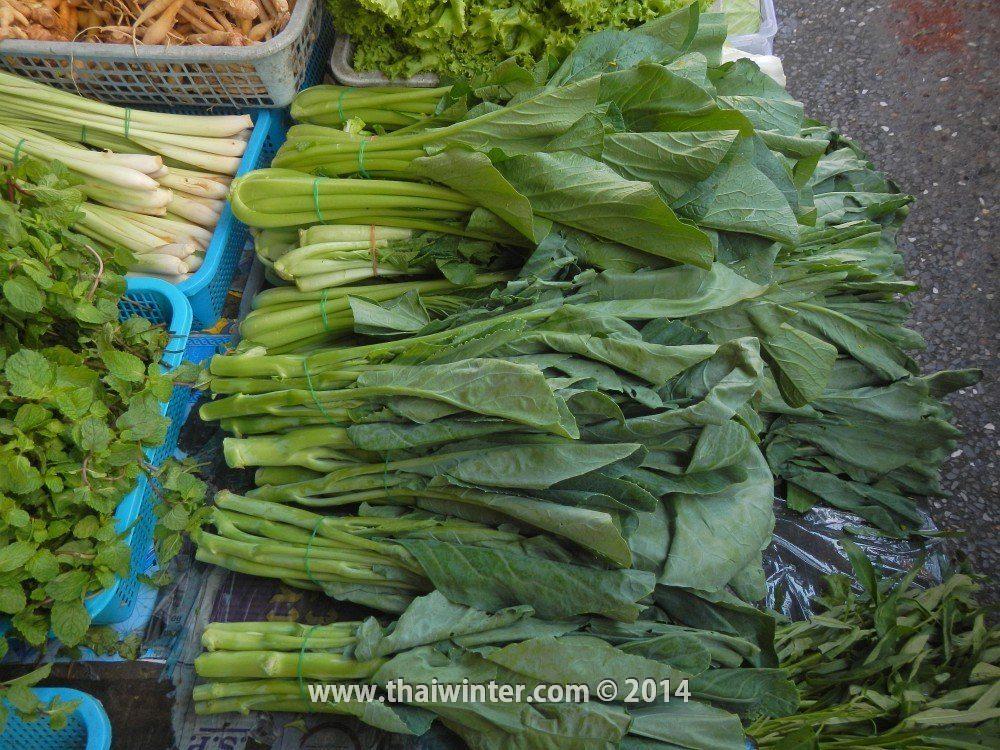 Листовая капуста в Таиланде
