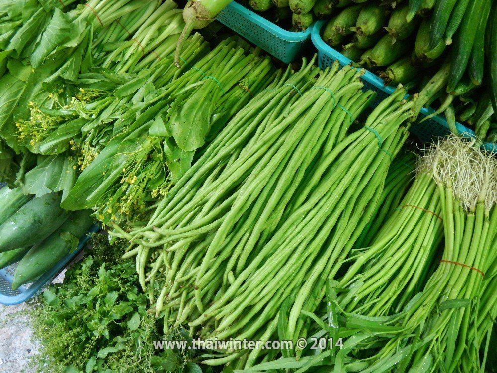 Тайская длинная фасоль