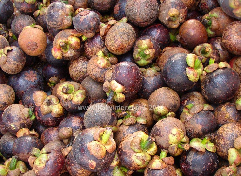мангостин на тайском рынке